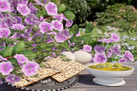 pesaj: Judío celebra passover con huevos, aceite de oliva, matzo y flores sobre fondo de la naturaleza