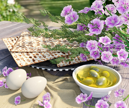 the feast of the passover: Jewish celebrate pesach passover with eggs,olive, matzo and flowers on nature background