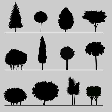 cypress tree: Silhouettes of trees and shrubs Illustration
