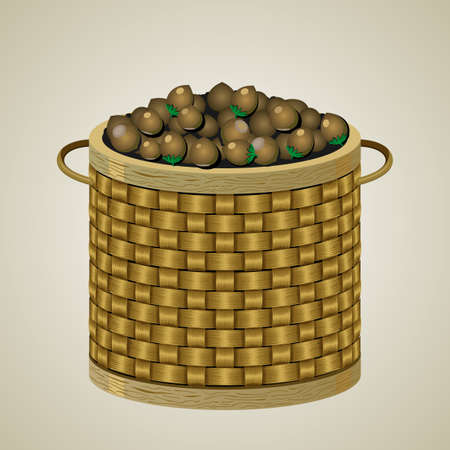 willow fruit basket: Round wicker basket with nuts Illustration