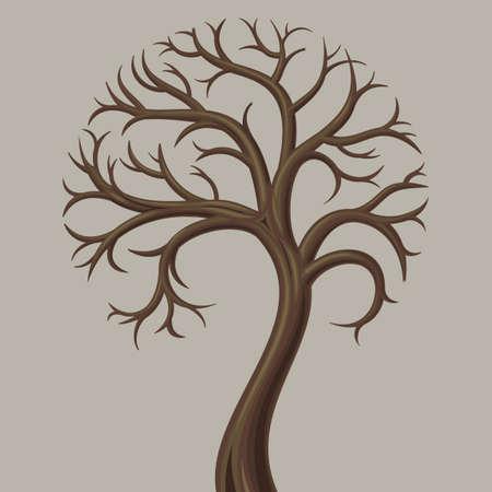 deciduous tree: Curva tronco baja caducifolia y sin hojas. Vectores