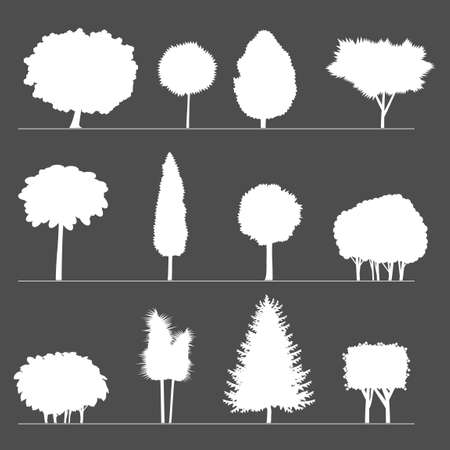 pine trees: Silhouettes of different shrubs and trees stylized geometric shapes.