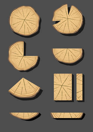 timber: Set of different sections of wood, timber beams and planks in graphics Illustration