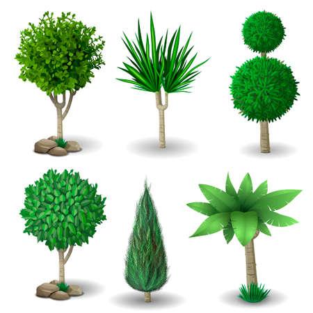 enebro: Conjunto de plantas y árboles ornamentales para jardinería. Los gráficos vectoriales. El boj, hibisco y el árbol árbol de la vida. Vectores