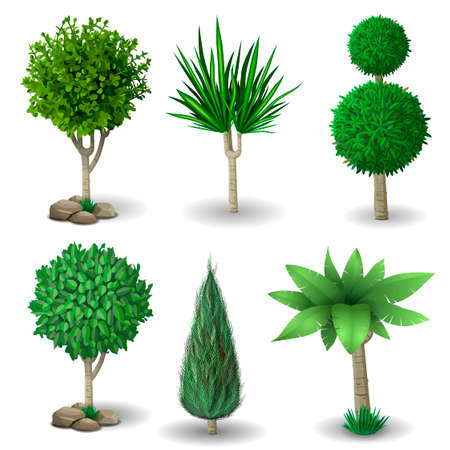 cypress: Set of ornamental plants and trees for landscaping. Vector graphics. Boxwood, hibiscus and arborvitae tree.