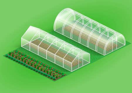 Set van kassen voor planten. Faciliteiten boerderij en tuin met planten, groenten. Vectorafbeeldingen