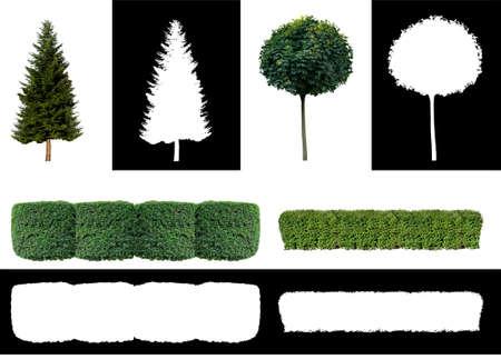 Set of plants with alpha channel Фото со стока