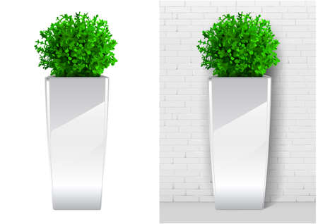 Bush plant in modern white pot. Decorative evergreen plant in a garden pot in vector graphics on a white background