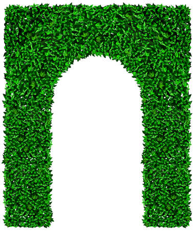 Green arch and bush fence of grapes ivy. Vector graphics. Entrance gate to the landscape park