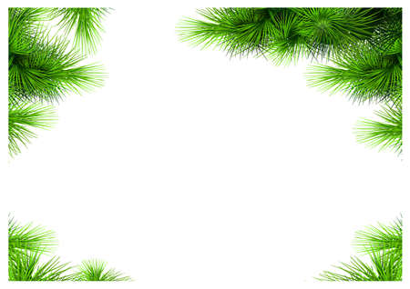 Set of corners of pine needles. Vector templates. Framework for the document. Christmas