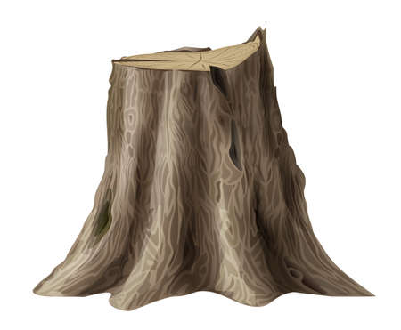 Large old tree stump oak broken trunk Illustration