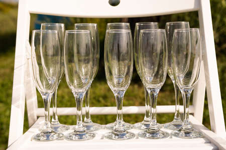 Set of empty luxury champagne glasses in a row on a white and green background
