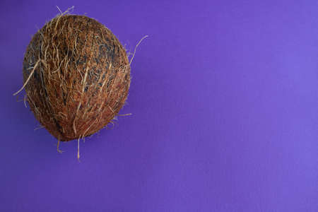 Top view of half ripe coconut on violet purple background. Summer concept
