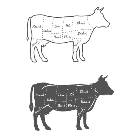 Detailed illustration, diagram or chart of American cut of beef Vectores