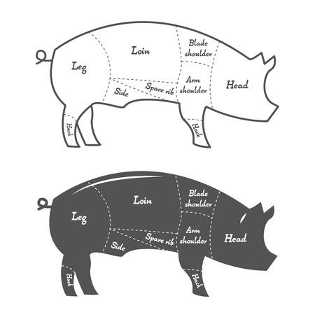 Detailed illustration or chart of pork cuts Illustration