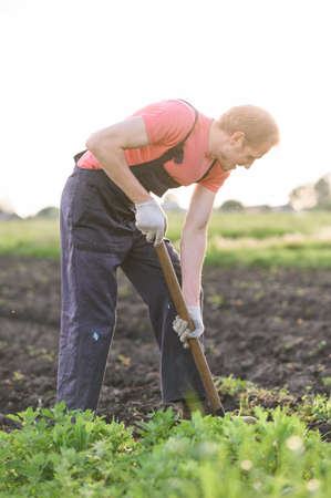gardener plants vegetables.Man making a hole to plant flowers in the garden.