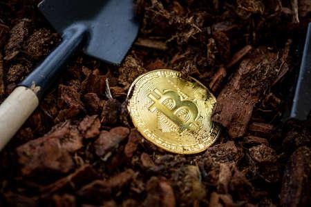 Mining Golden Bitcoin. Investment And Interest Concept. Photo Golden Bitcoins