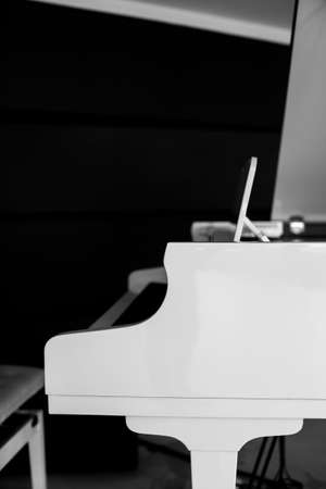 white piano. white grand piano side view. Black and white photography 写真素材
