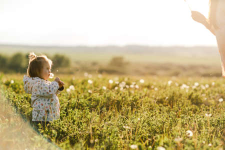 Portrait of a cute little girl in sunny summer day at green nature background. Summer joy - lovely girl blowing dandelion
