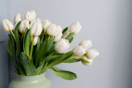 bouquet of tulips in front of spring scene. Copy space. Pattern Banco de Imagens - 137895724