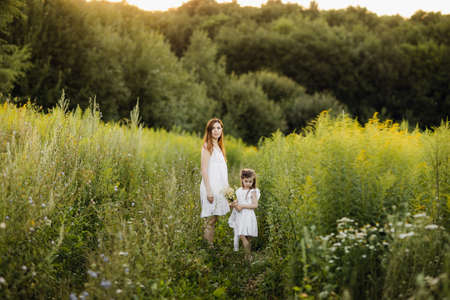 Mother with daughter walking along a country road, background summer meadow sunset, back view