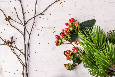 stillife: Pine branch and winter plants on the white table background horizontal