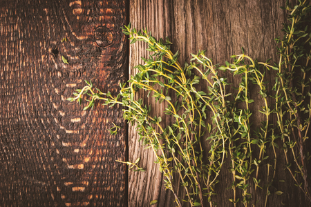 piquancy: Thyme sprigs on the old wooden background