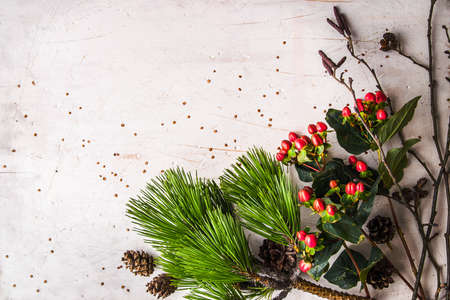 alder: Pine branch and winter plants on the white table background horizontal