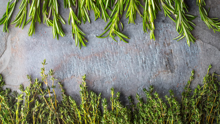 piquancy: Thyme  and rosemary sprigs on the stone table