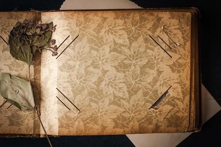Ouvrir l'album photo vintage avec fleur séchée vue de dessus Banque d'images