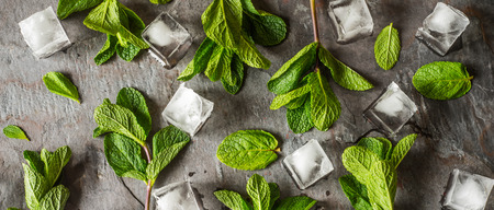 wide screen: Fresh mint with ice cube on the stone table wide screen