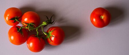 wide screen: Tomatoes twig on the white background  wide screen