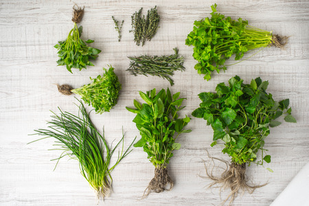 table top: Herbs mix on the table top view Stock Photo