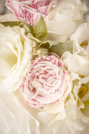 tender: Tender flowers background vertical Stock Photo