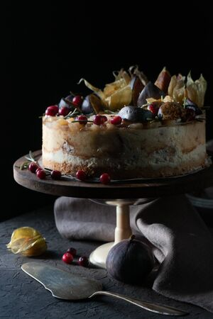 Fruit cheesecake on a holder with a napkin and a spoon side veiw