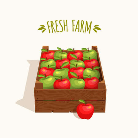 crates: Wooden crate full of apples red and green. Vector illustration Illustration