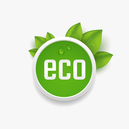 environment friendly: Eco label, button with green leaves and dewdrop. Vector illustration
