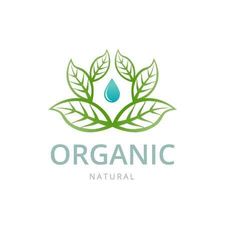 leaf water: Organic  logo template. Water drop and leaves. Vector Illustration
