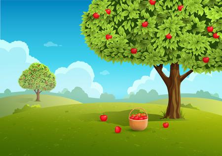 canastas con frutas: huerto de manzanas con la cesta de manzanas. Paisaje de fondo. ilustración vectorial