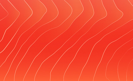 Red salmon texture. Fish background.