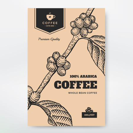 Coffee Packaging Design. Coffee branch engraving illustration. Vettoriali