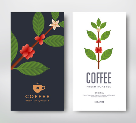 coffee coffee plant: Packaging design for a coffee. Vector template package. Coffee branch vector illustration. Coffee plant with coffee berry.