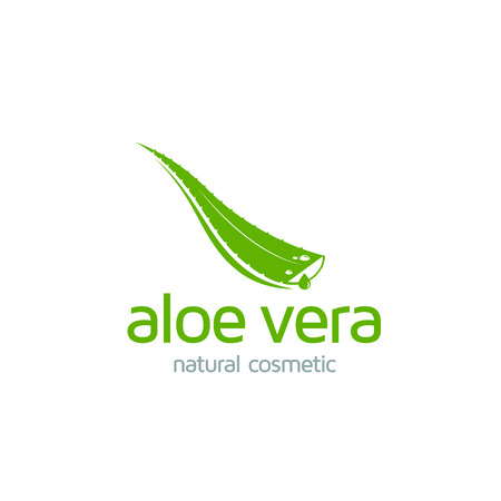 Aloe Vera logo template. Green leaf aloe vera label or icon. Vector sign  イラスト・ベクター素材