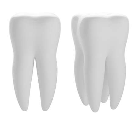3d render of two white tooths photo