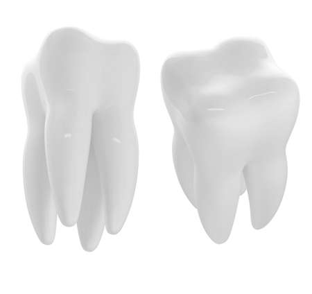 3d render of two white tooths Stock Photo - 8684772