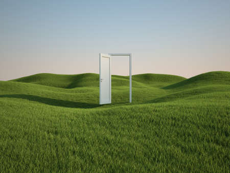 3d render of beautiful grass field with opened white door  photo