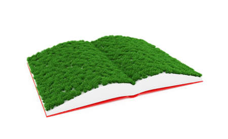 dream land: 3d illustration of opened book with grass on pages
