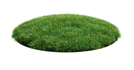 grass close up: 3d render of grass arena isolated on white background