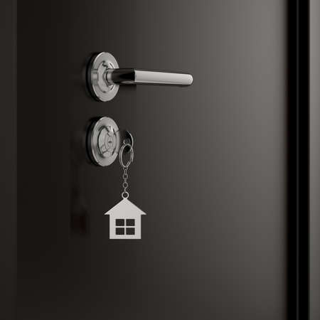 entry numbers: 3d illustration of a lock and key with metal house figure