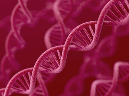 researchs: 3d render of DNA on red background
